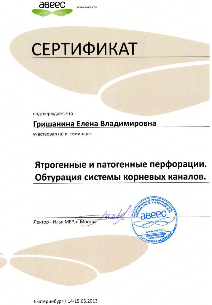 Стоматологическая клиника ВитаДентис Озерск. Сертификаты Гришанина.